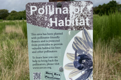 Welcome to the Assateague State Park Pollinator Habitat