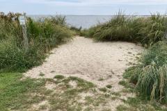 Walk to the Living Shoreline